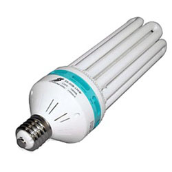 150 W or 200w Compact Fluorescent Daylight Grow Bulb, EL-MOGUL BULB