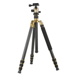 Triopo GT-2504X8C Adjustable Portable Carbon Fiber Tripod (Gold) with B-1 Aluminum Ball Head (Black)