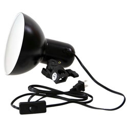 "6"" Reflector with Light Socket, TABLETOP6IN_REFLECTORONLY"
